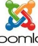 HNG DN CI T WEBSITE JOOMLA (phin bn 1.5.15)